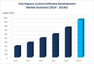 Cluj Custom Software Development Market Turnover 2014_2019